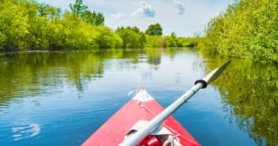 North Carolina Vacation 3 Tips to Your Dream Trip